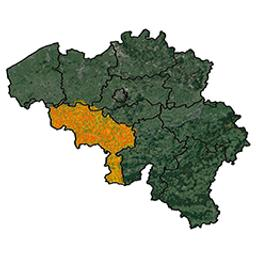 Province de Hainaut arrondissement de Tournay : canton de Templeuve P.C. Popp | Popp, Philippe Christian (1805-1879)