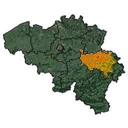 Province de Liège arrondissement de Liège : canton de Hollogne-aux-Pierres P.C. Popp | Popp, Philippe Christian (1805-1879)