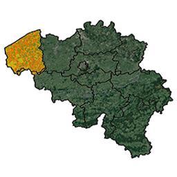 Province de Flandre Occidentale arrondissement de Bruges : 4e canton de Bruges P. C. Popp | Popp, Philippe Christian (1805-1879)