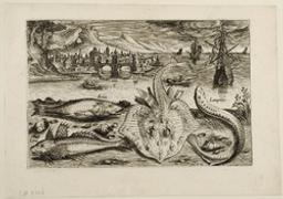 Erica, Gurnard, ray and sea lamprey Graphic   Collaert, Adriaen (1560-1618). Artiste